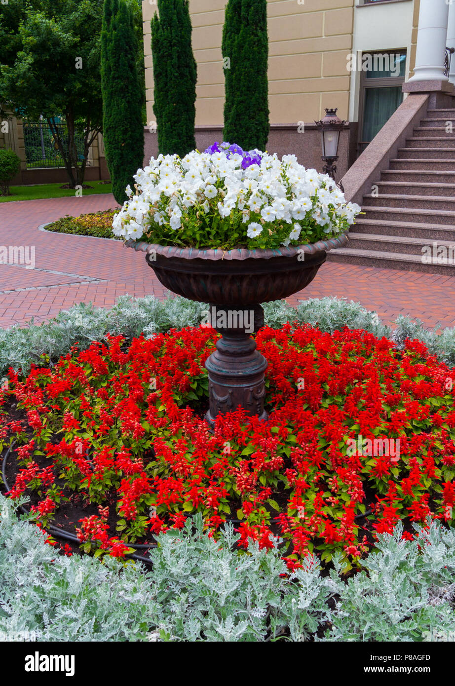 A Round Flowerbed With Red Flowers On Which Stands A Large Brown