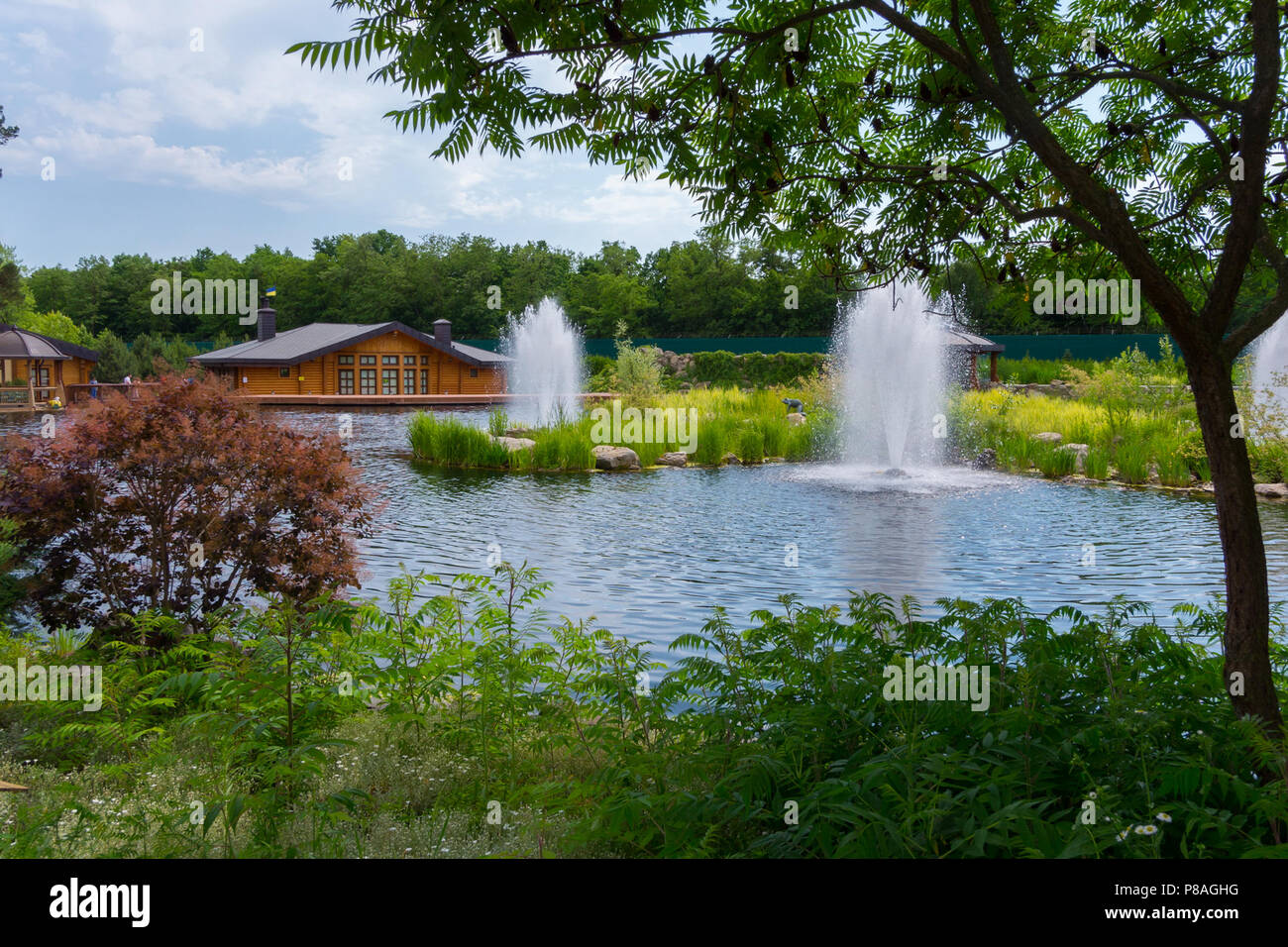 Beautiful Landscape Design With A Wooden House And Fountains On The Lake .  For Your Design