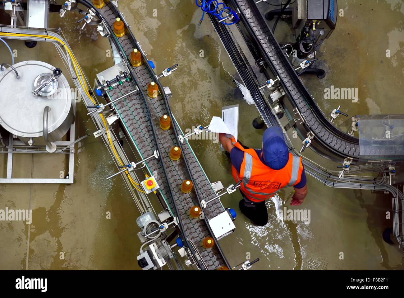 Man working on ,Bottling production line, Healeys Cornish Cyder Farm,Penhallow, Truro,Cornwall,England,UK Stock Photo