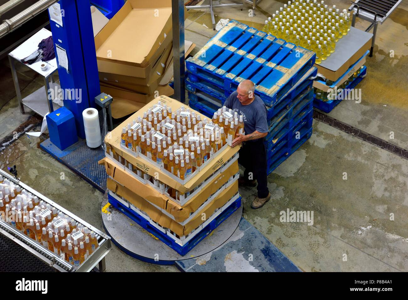 Man stacking cases on a pallet turntable, Healeys Cornish Cyder Farm,Penhallow, Truro,Cornwall,England,UK Stock Photo