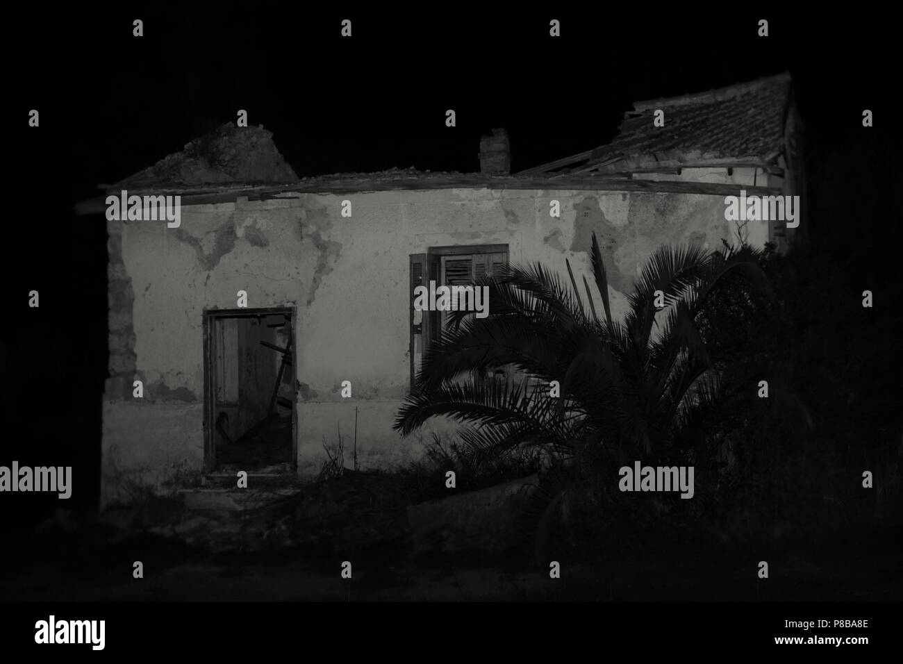 Abandoned House And Overgrown Plants At Night Black And