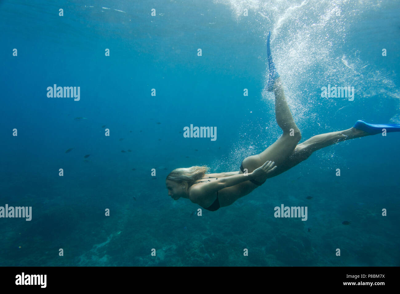 side view of woman in bikini and flippers diving in ocean alone - Stock Image