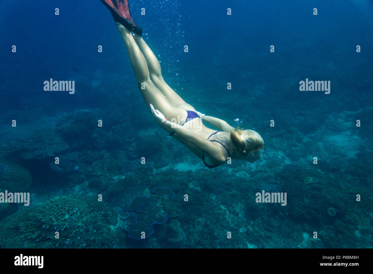 underwater pic of young woman in bikini and fins diving in ocean alone - Stock Image