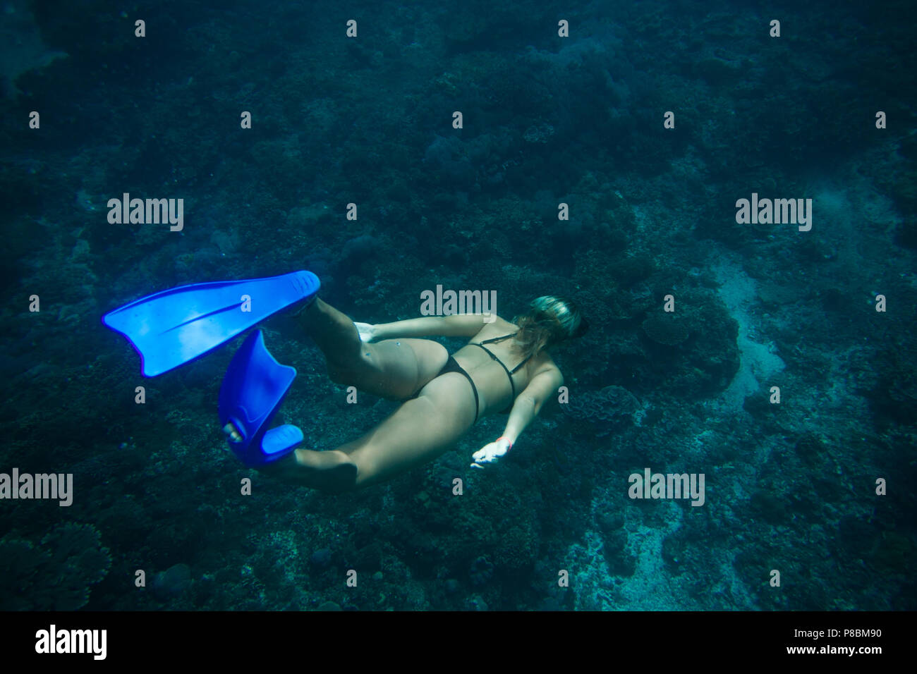 back view of woman in bikini and fins diving in ocean alone - Stock Image