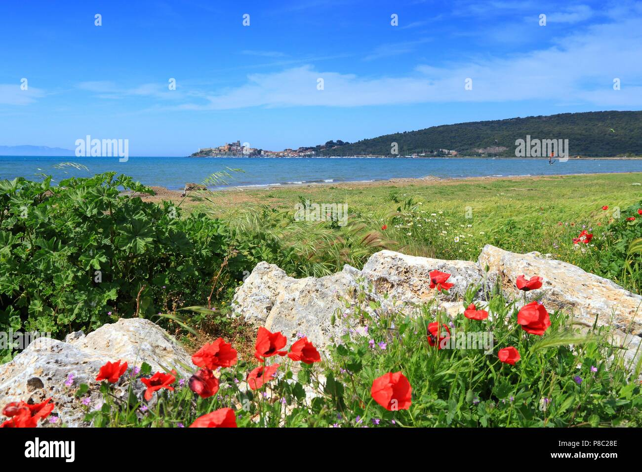 Tuscany, Italy - seaside in Grosseto province. Spring time landscape in Talamone. - Stock Image