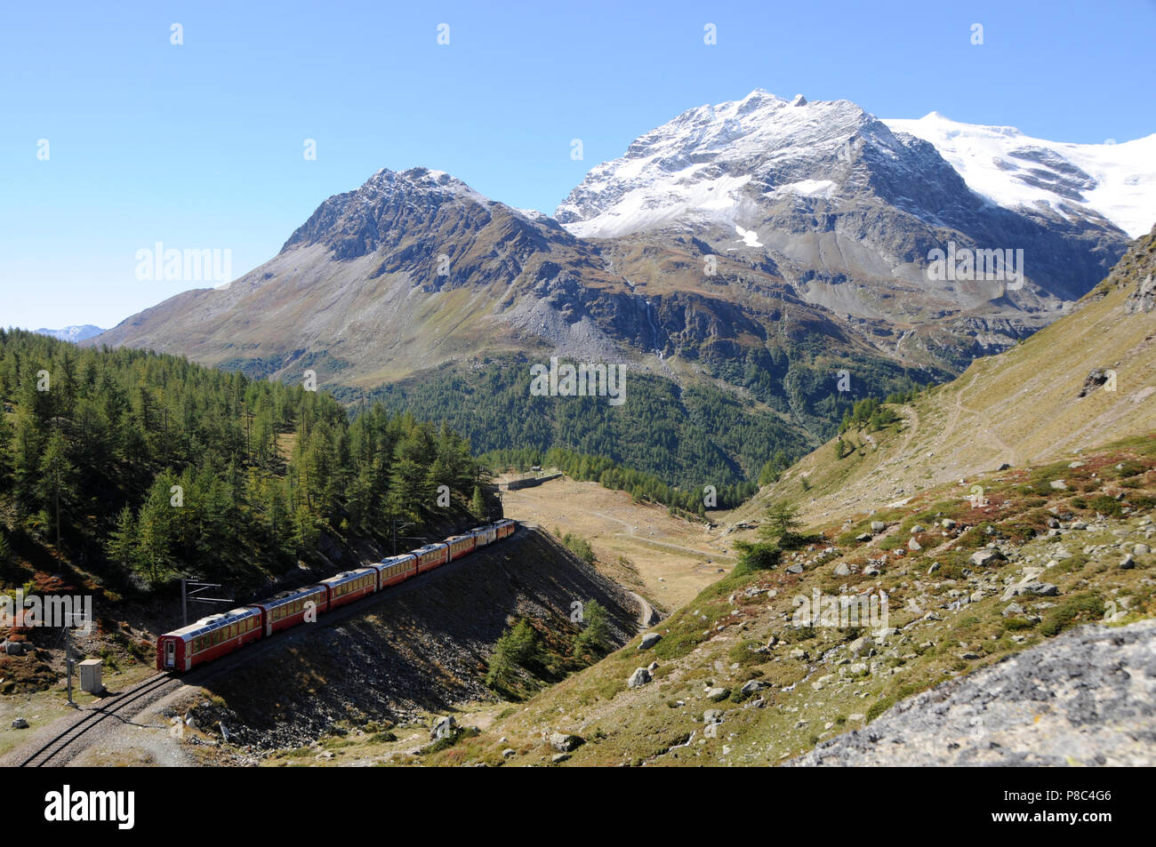 Bernina-Train in the swiss alps near Alp Grüm | Bernina-Express der Rhätischen Bahn im Puschlav - Stock Image