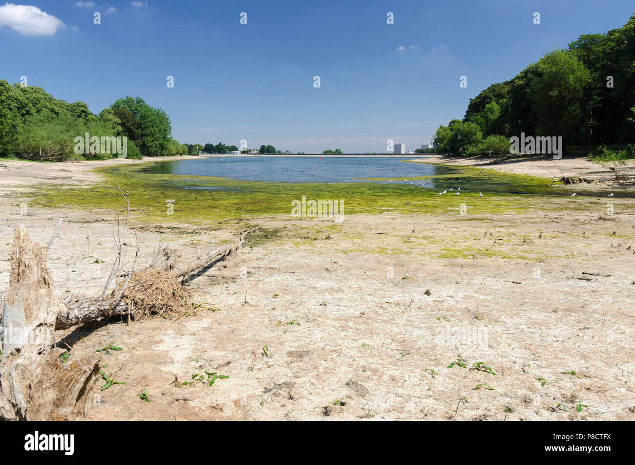 Edgbaston,Birmingham, UK. 11th July 2018. The continued dry weather in Birmingham has caused very low water levels at Edgbaston Reservoir which feeds the canal network. Credit: Nick Maslen/Alamy Live News Stock Photo
