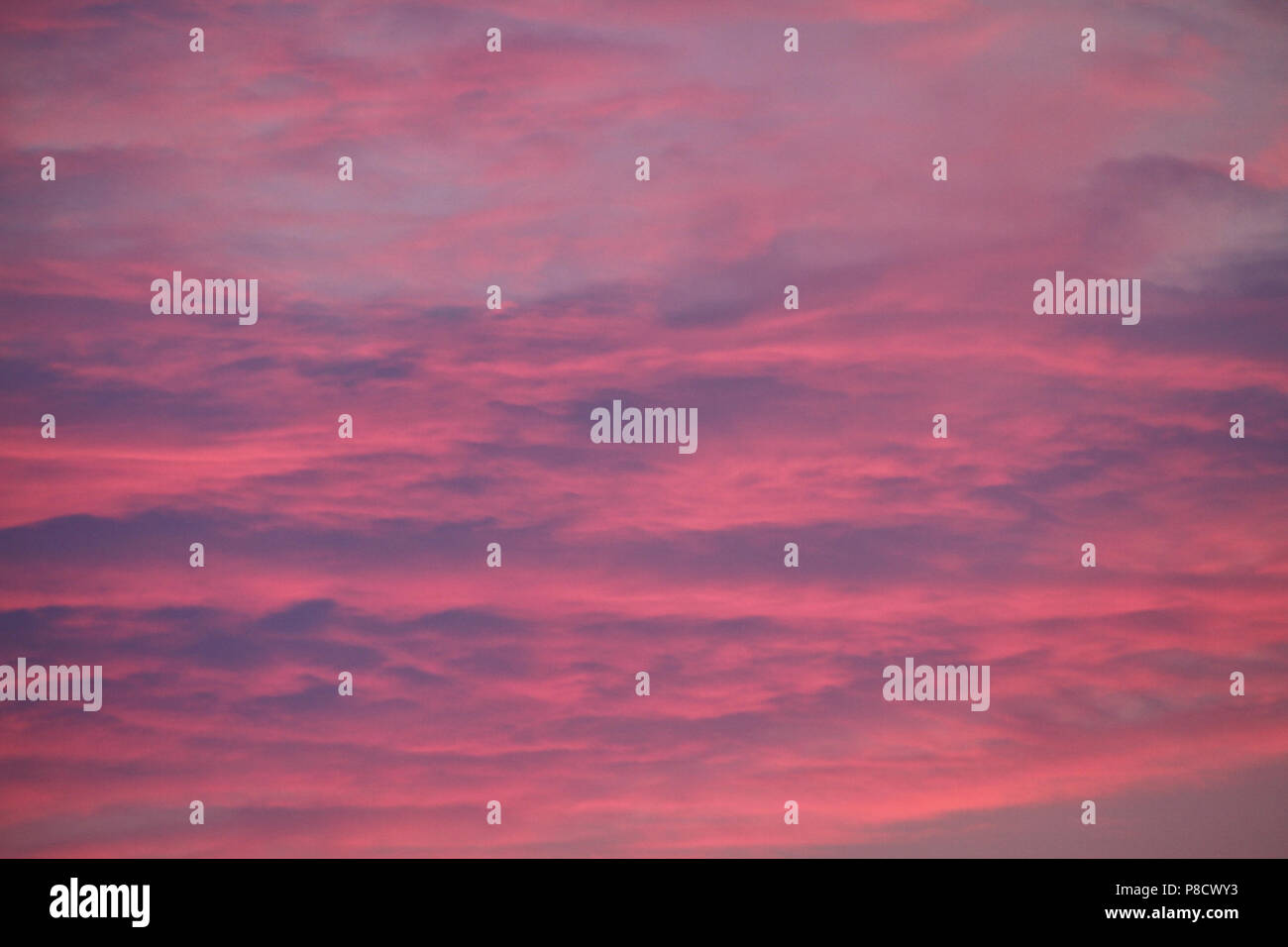 An unusual pink sky in divorces and blue spaces. Rarely such you will see . For your design - Stock Image