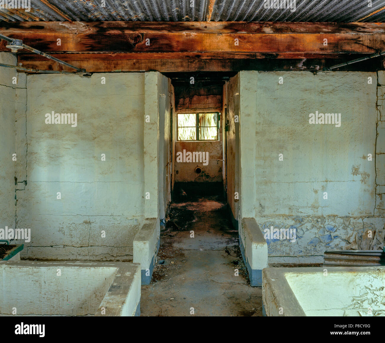 Bath House Ruins, Zzyzx Mineral Springs, Mojave National Preserve CA Stock Photo