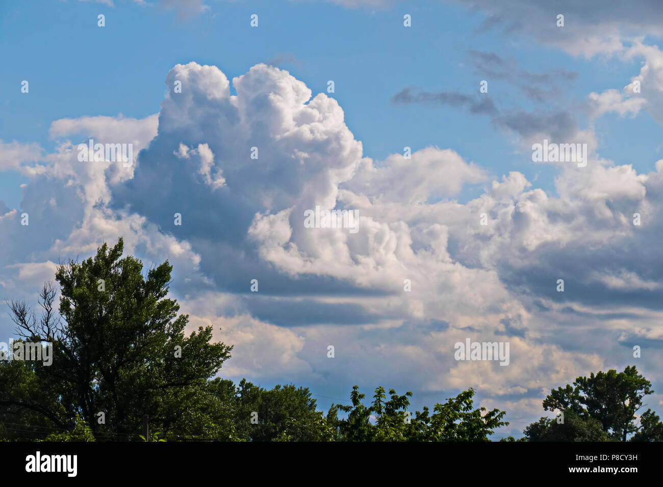 The firmament with white, large clouds. It looks pretty like icebergs in the ocean . For your design - Stock Image