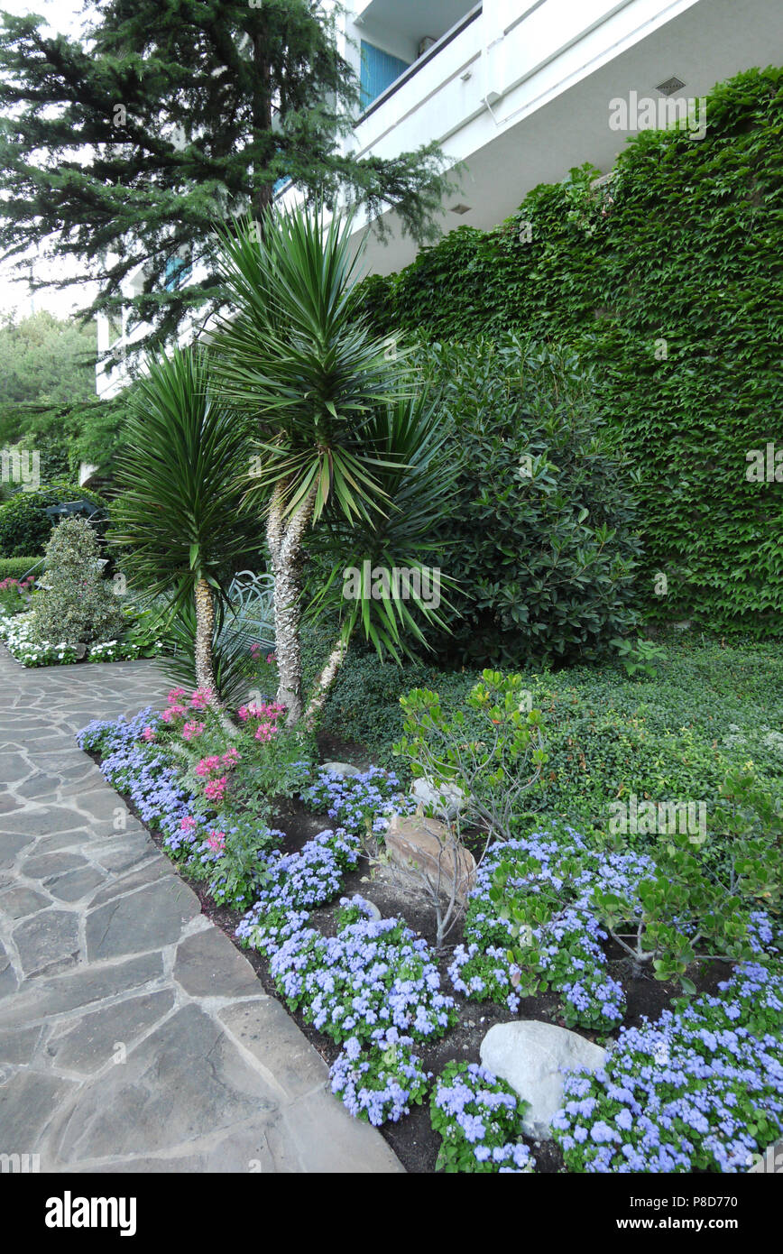 Flowerbed With Small Flowers Flower Beds And Ornamental Plants