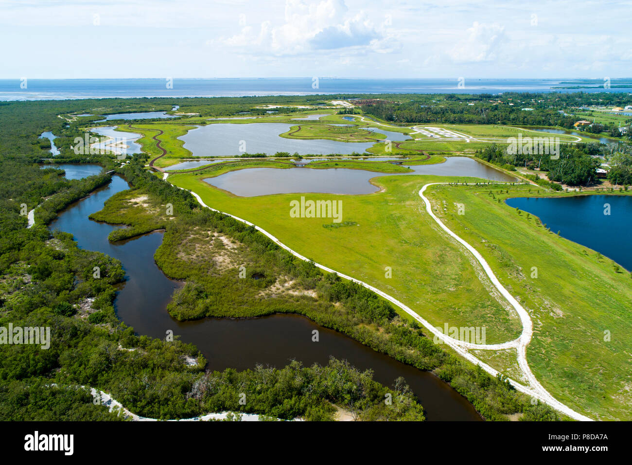 Robinson Preserve Bradenton, A 487-acre mosaic of mud flats, mangrove swamps,  beaches and observation tower - Stock Image