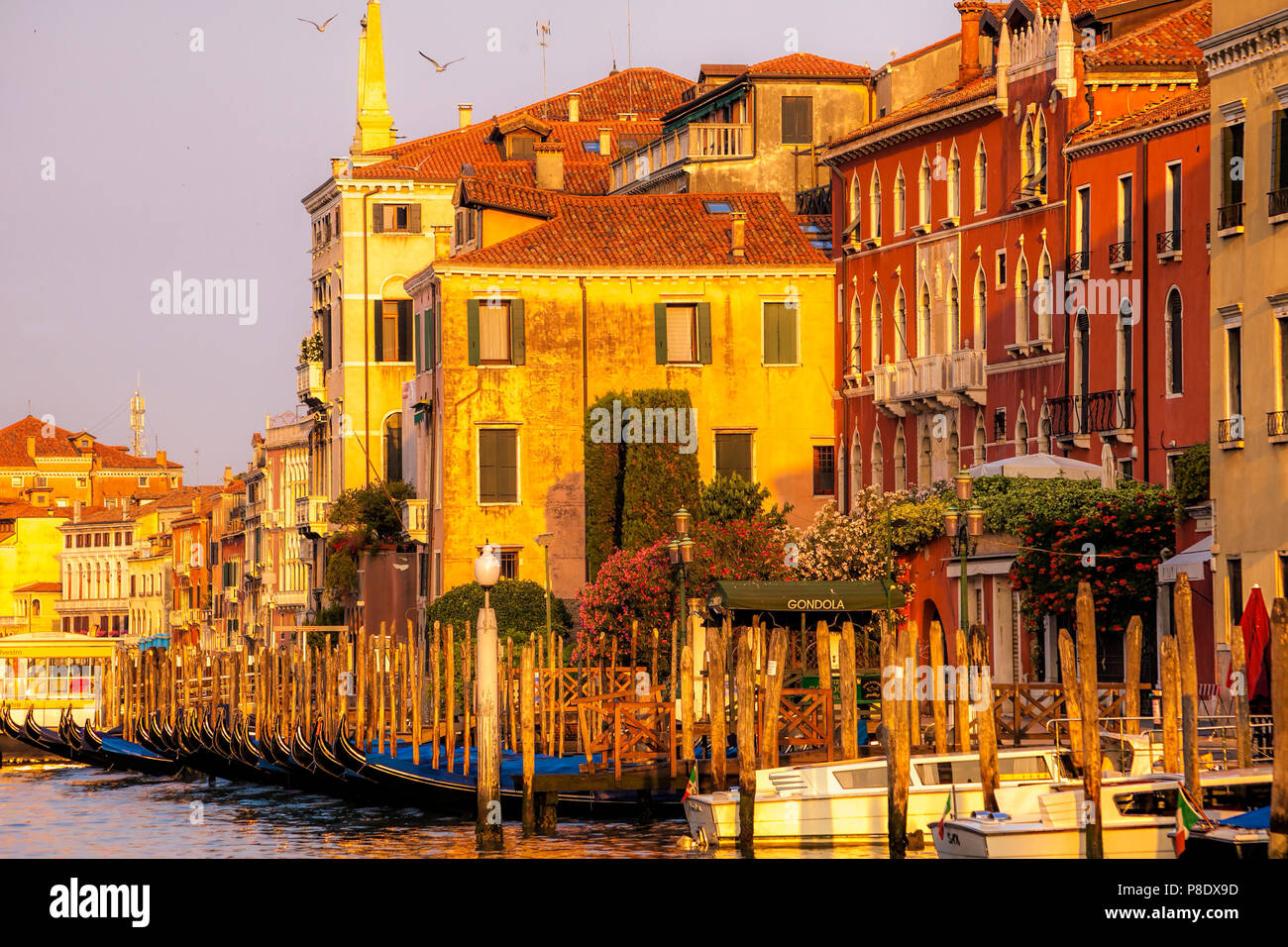 Venice, Italy warmed by the morning light - Stock Image