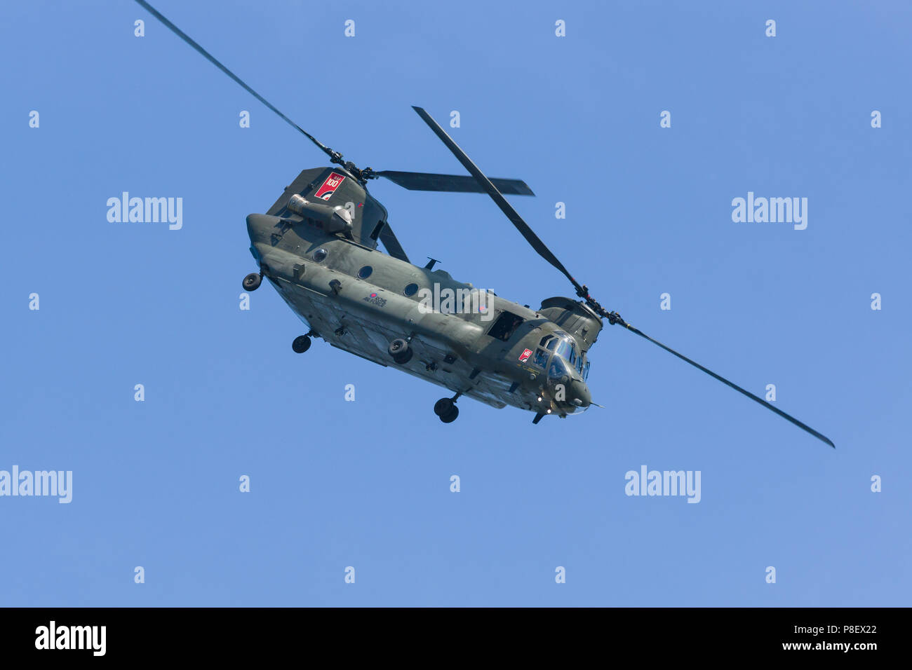 Boeing Chinook military transport helicopter of the Royal Air Force who use it to provide battlefield support - Stock Image