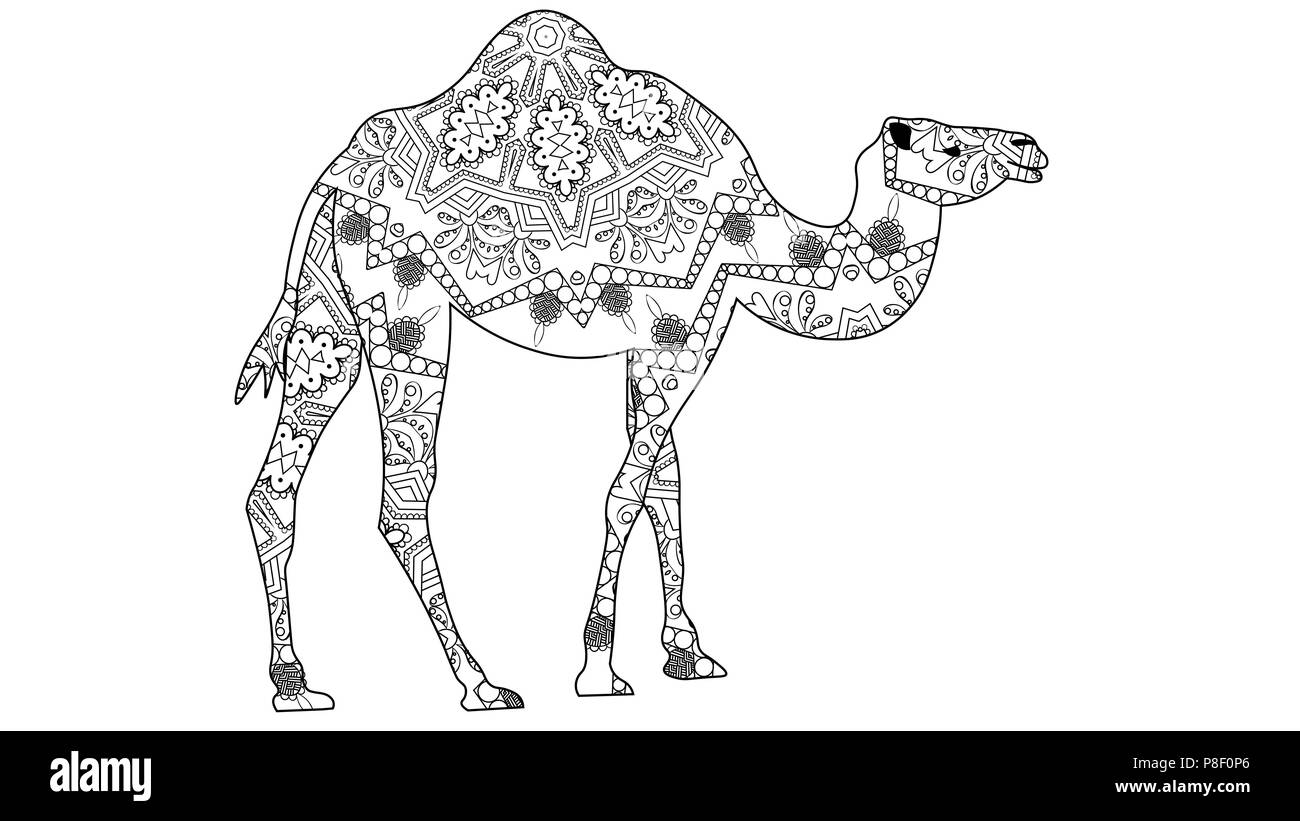 Vector Anti Stress Coloring Book Page For Adult With Animal Camel Style Illustration High Details Isolated On White Background Monochrome Sketch