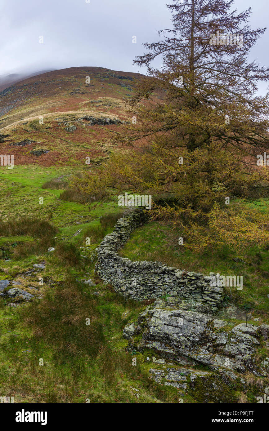 Halls Fell on the southern slope of Blencathra in the Lake District National Park, Cumbria, England. Stock Photo