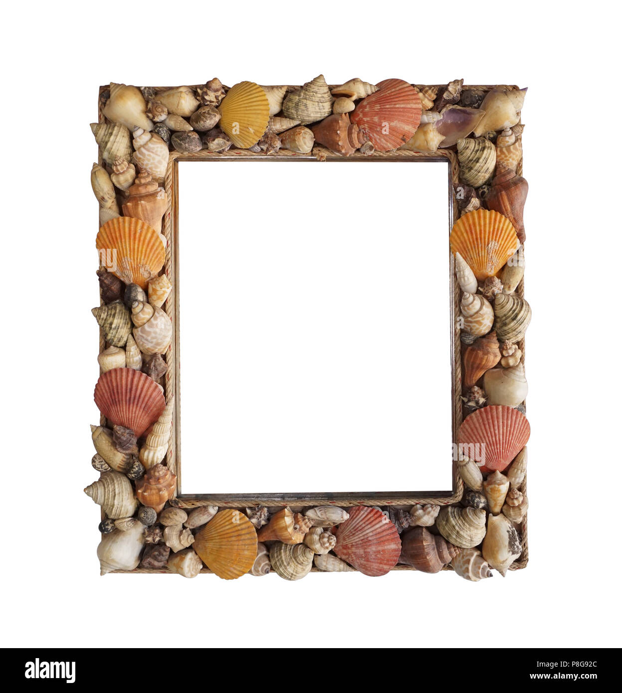 Letter made sea shells cut out stock images pictures alamy decorative photo frame made from different shells stock image spiritdancerdesigns Images