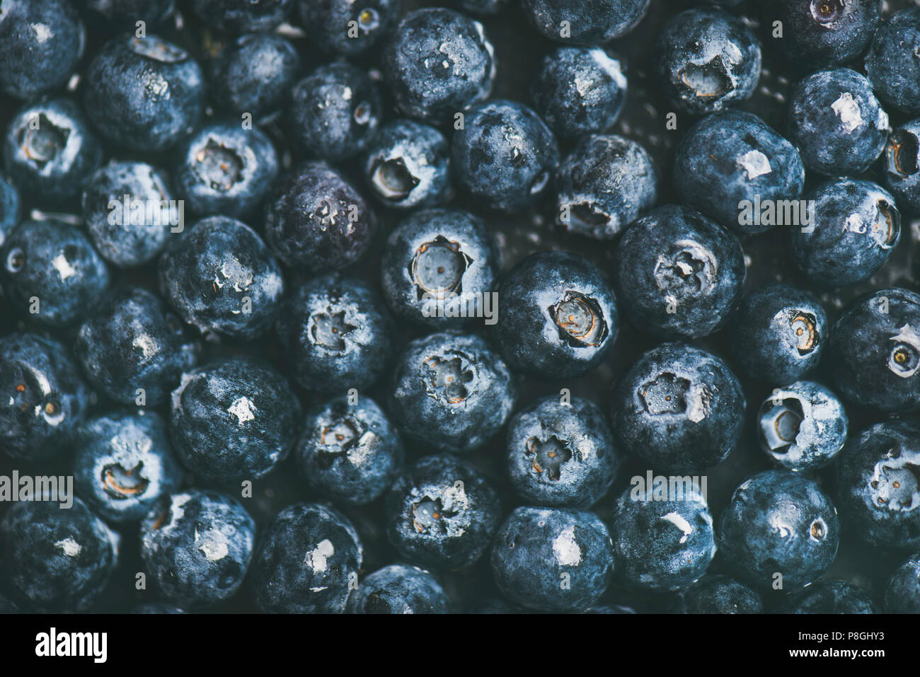Fresh blueberry texture, wallpaper and background. Flat-lay of wet dark forest blueberries, top view. Summer food or local market produce concept - Stock Image