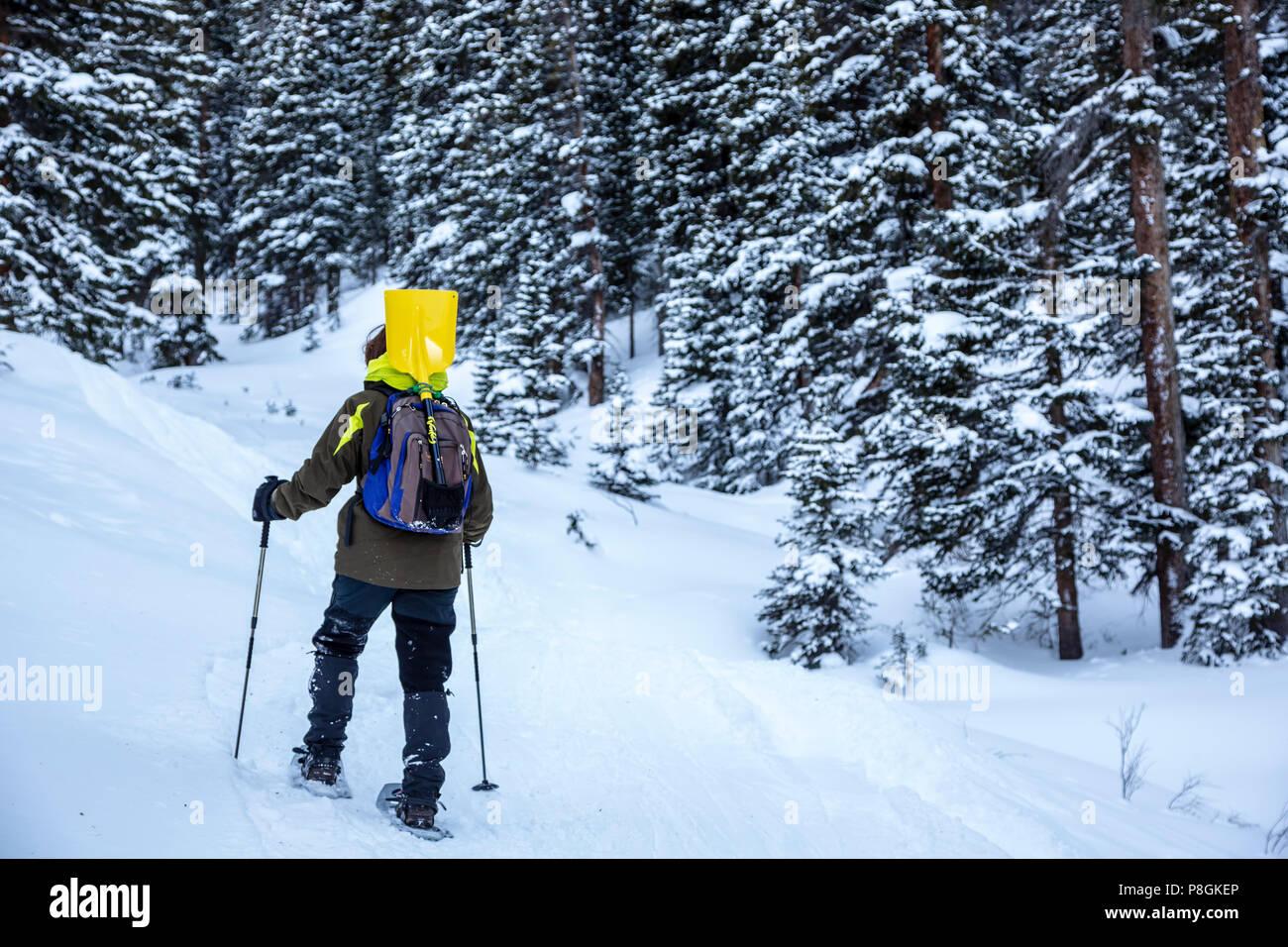 Snowshoer hiking near Loveland Pass, Colorado USA - Stock Image