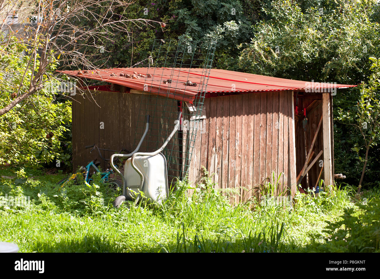 neglect shed building in garden - Stock Image