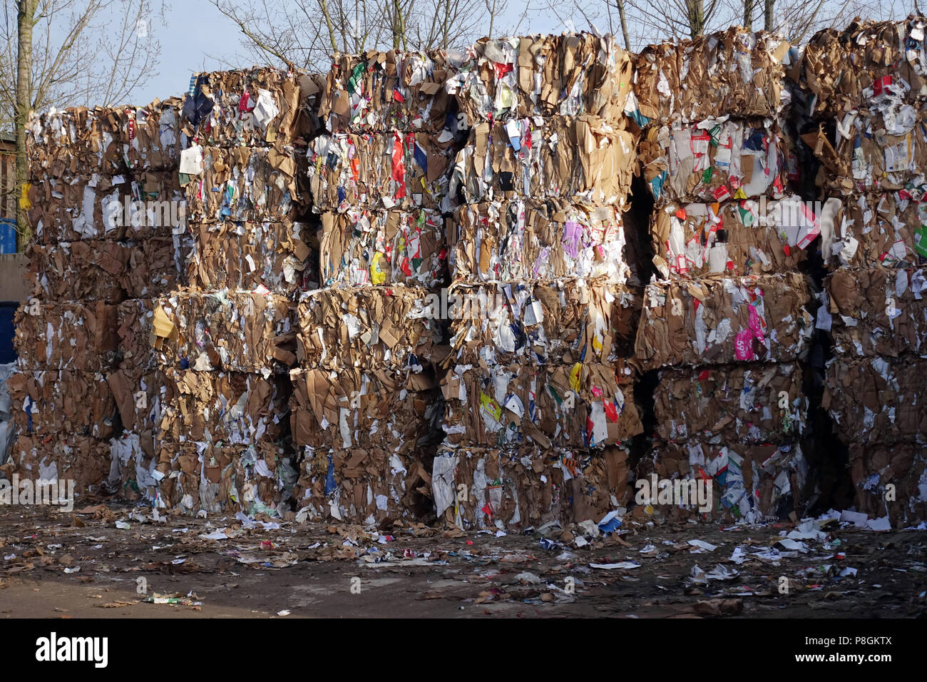 Berlin, Germany, in square format pressed waste paper on a landfill - Stock Image