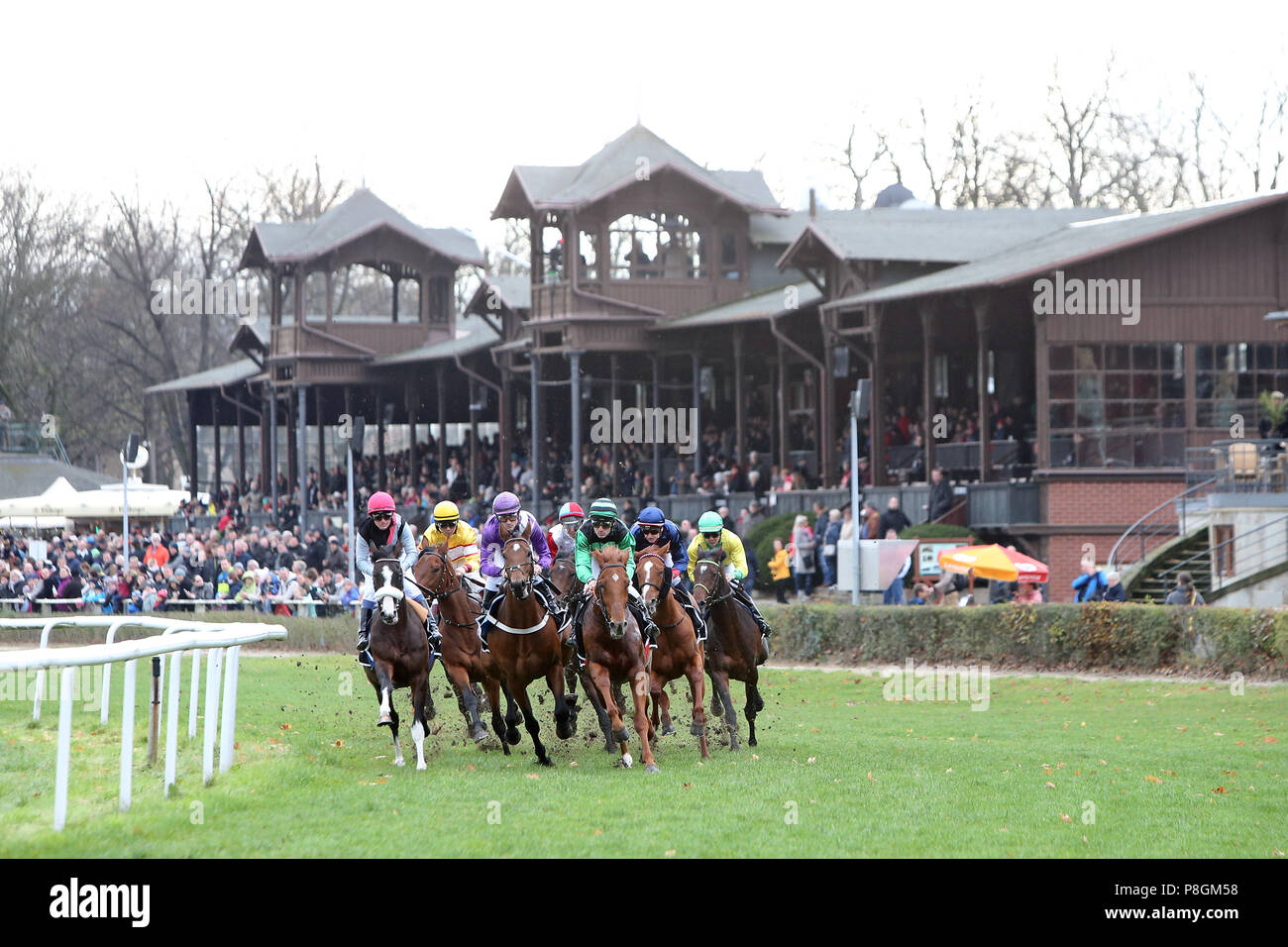 Dresden, horses and jockeys in the bow in front of the tribune - Stock Image