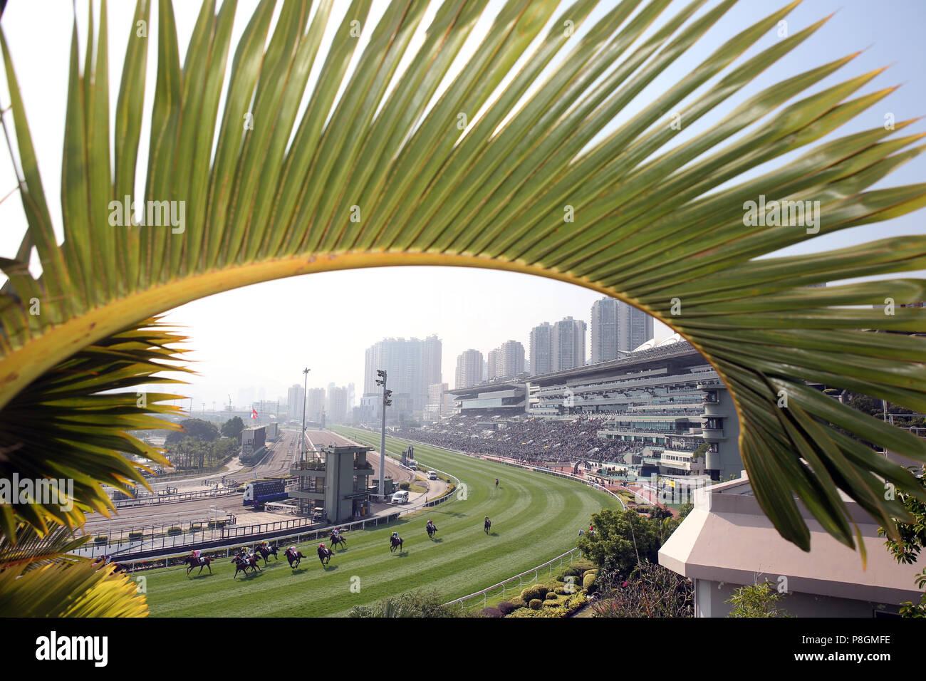Hong Kong, China, view of the racecourse Sha Tin - Stock Image