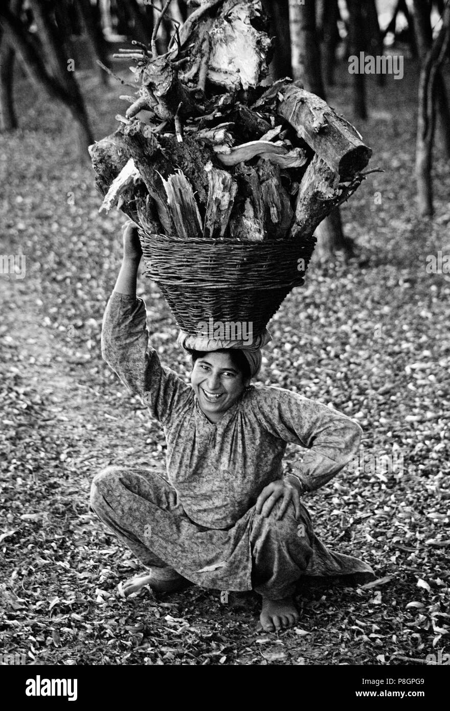 KASHMIRI WOMAN carries a BASKET of FIRE WOOD on her head - KASHMIR, INDIA - Stock Image