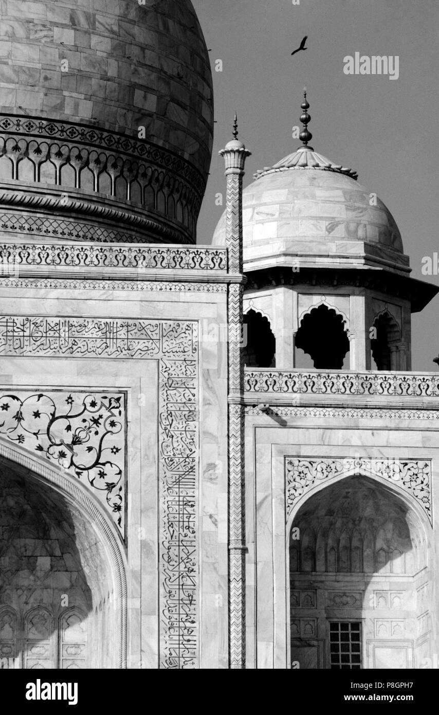 Detail of smaller domes of the TAJ MAHAL, built by emperor Shahjahan for his wife in 1653 - AGRA, INDIA - Stock Image