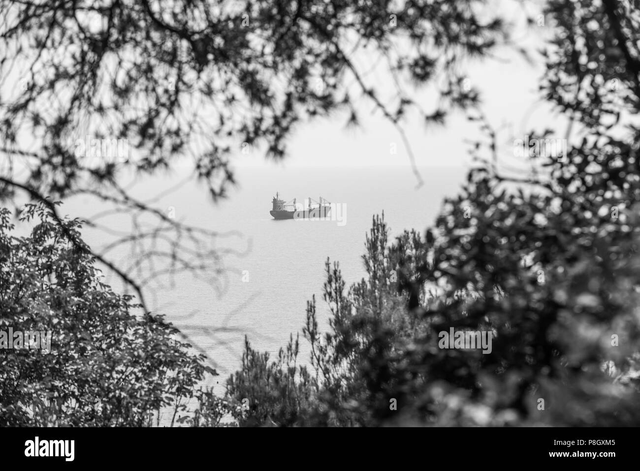 Cargo Ships Black And White Stock Photos Images Alamy Craft Wiring Diagram Anchored Around Trieste Italy Image