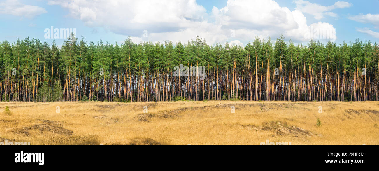 Steppe Heath Wood High Resolution Stock Photography And Images Alamy