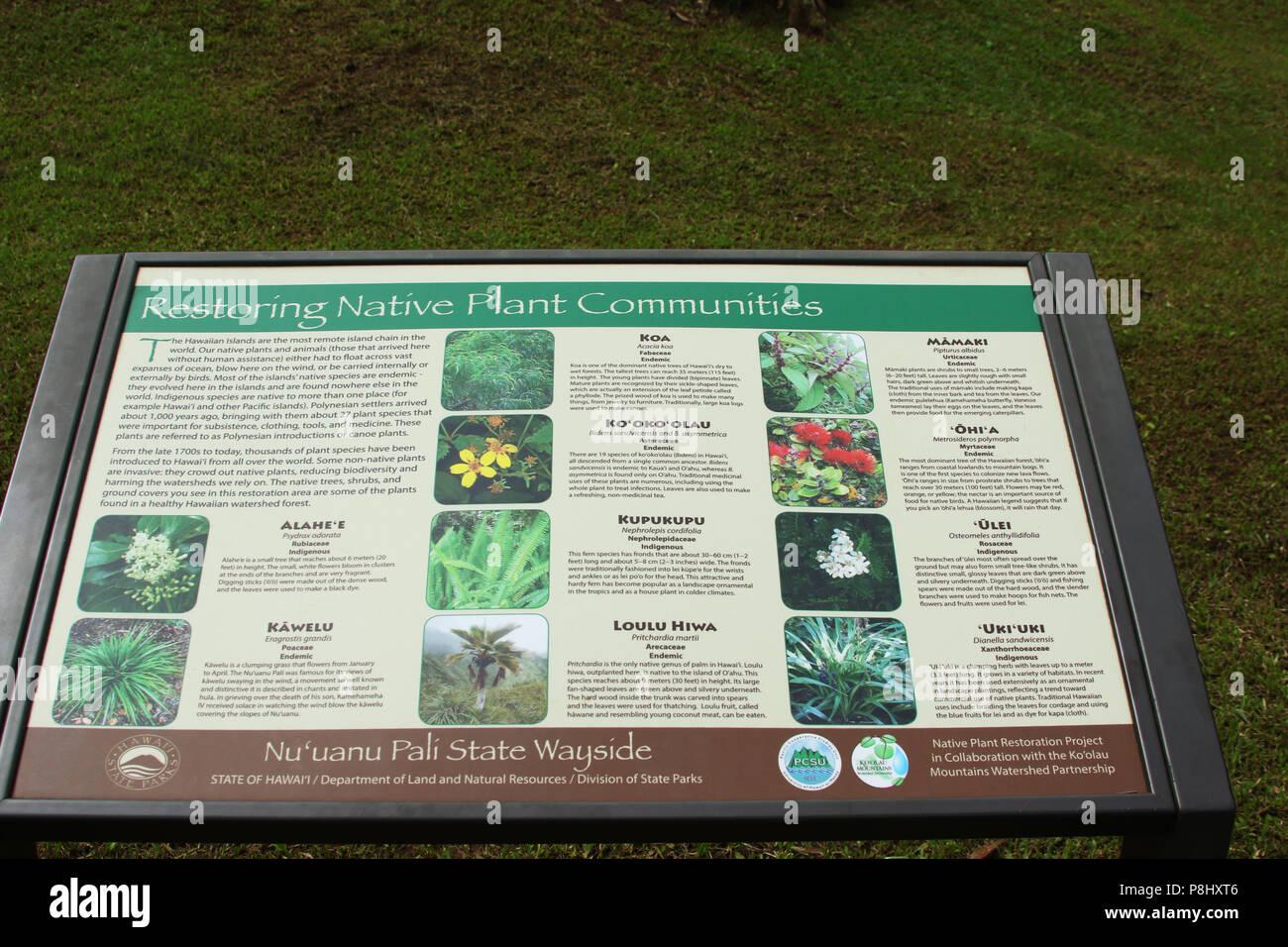 Restoring Native Plant Communities. Tourist educational sign at Nu'Uanu Pali Lookout. Oahu Island, Hawaii, USA. - Stock Image
