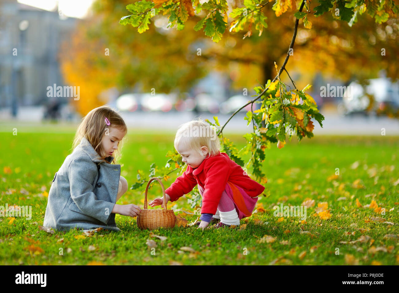 Little girls gathering acorns for crafting and playing - Stock Image