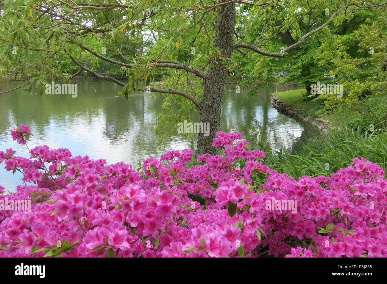 Victorian Pond Stock Photos & Victorian Pond Stock Images - Alamy