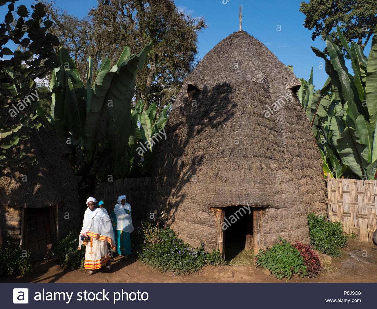 Cottage in the village of Dorze, Ethiopia - Stock Image