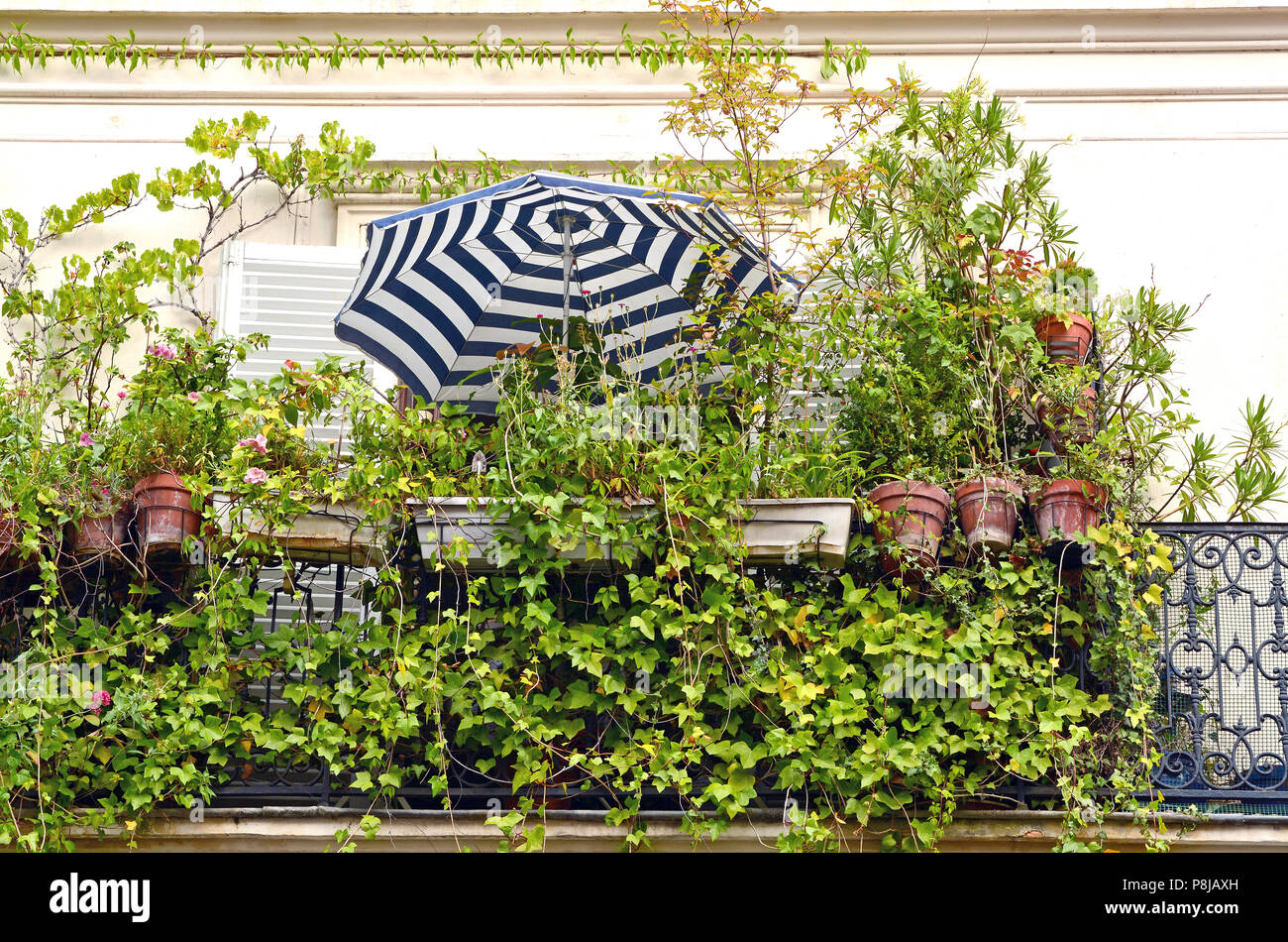 A blue and white striped parasol on a balcony smothered in plants, seen in Paris (France) well illustrated the concept of 'staycation'. - Stock Image