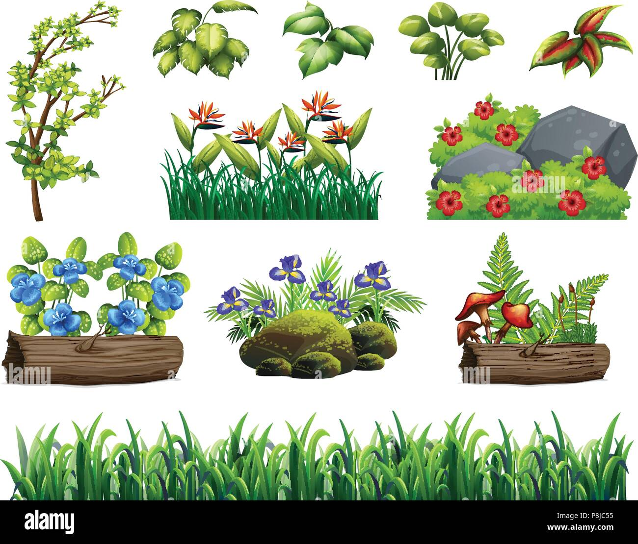 A Set of Forest Element illustration - Stock Vector