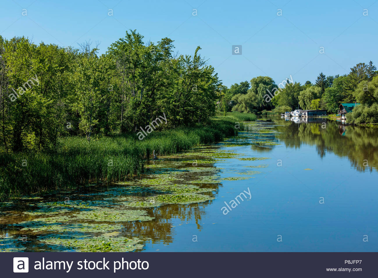 Homes with boats on river in polder reclaimed marsh near Lake Simcoe and Bradford Ontario Canada Holland Marsh East Holland River - Stock Image