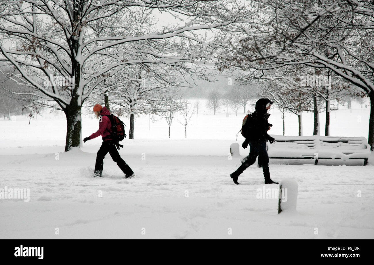 People walking through the snow in Regents Park, NW London, England, UK Stock Photo