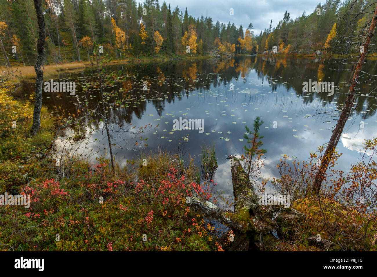 lake in Hossa, Finland - Stock Image
