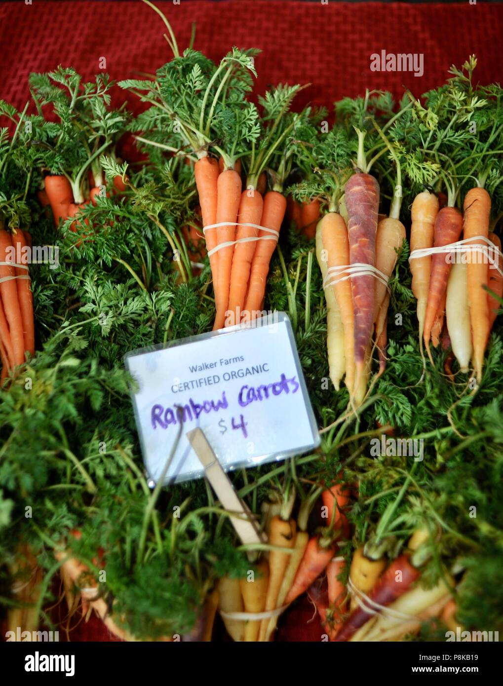 Tidy bundles of rainbow carrots (multicolored) at the Walker Farms farmstand for sale at farmers market in Savannah, Georgia, USA Stock Photo