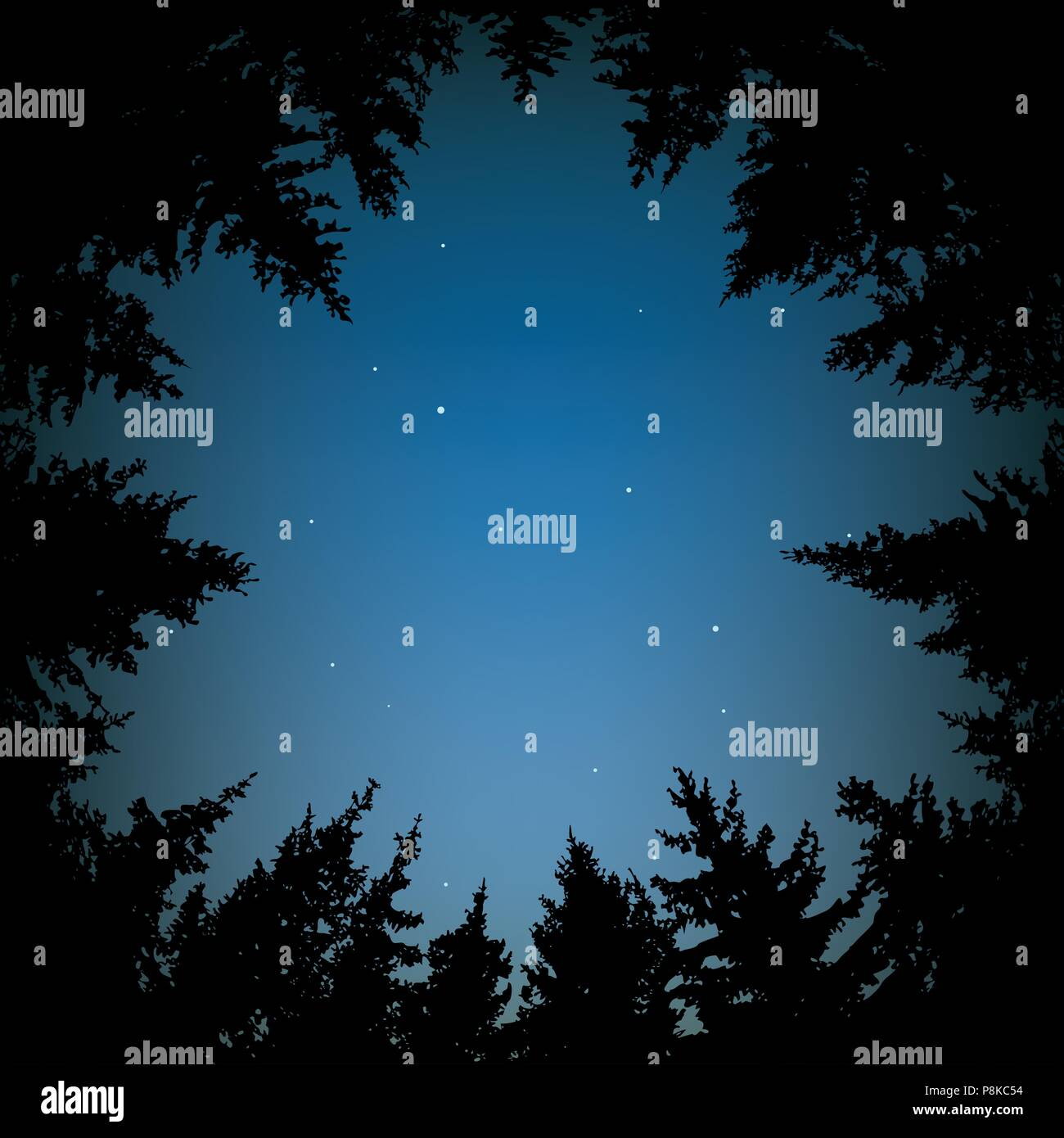 vector background of blue night sky with stars and dark forest