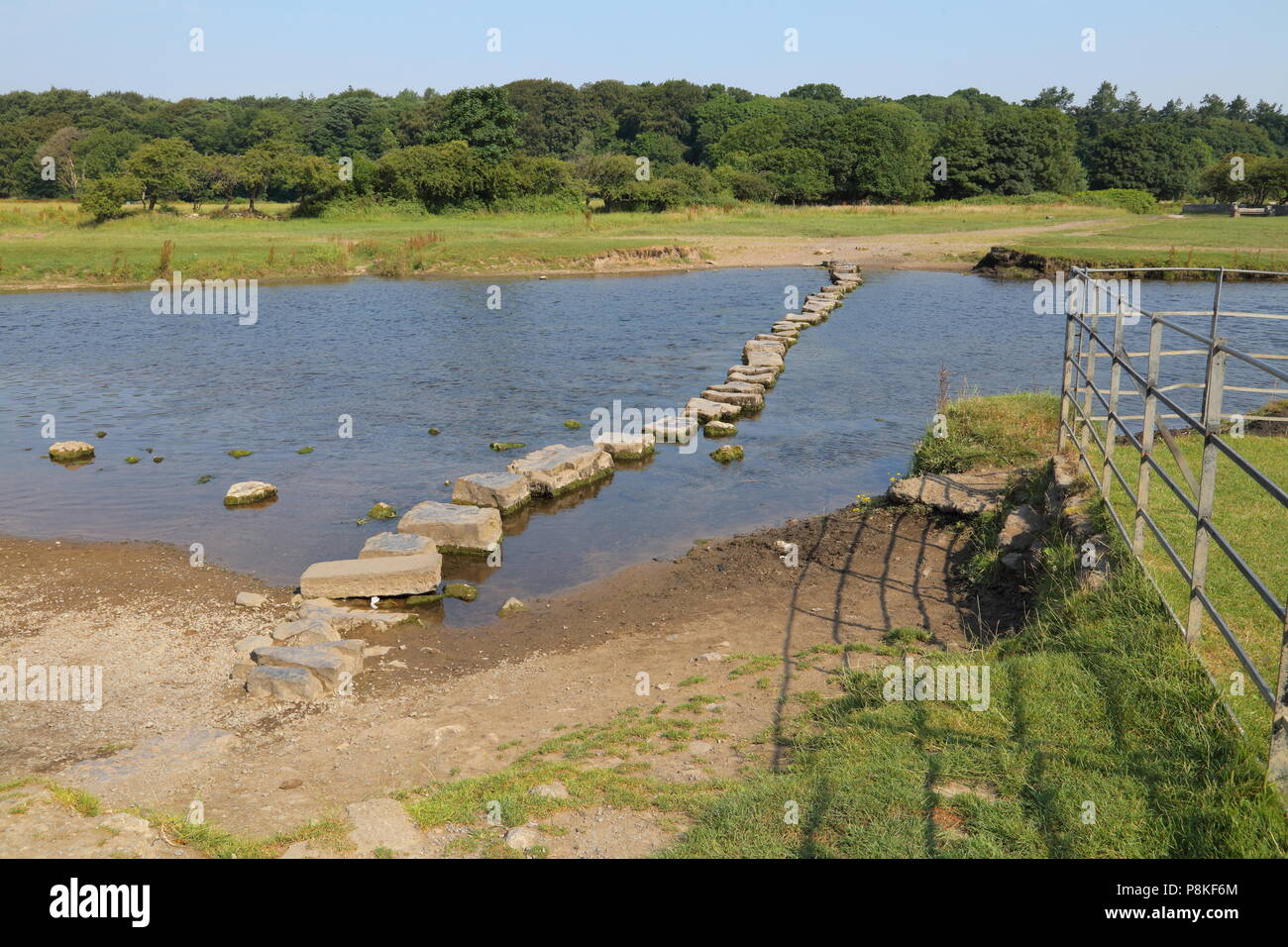 The castle ruins stepping stones in Ogmore village adjacent to the ruined castle, passable during most of the year this is a popular foot crossing. - Stock Image