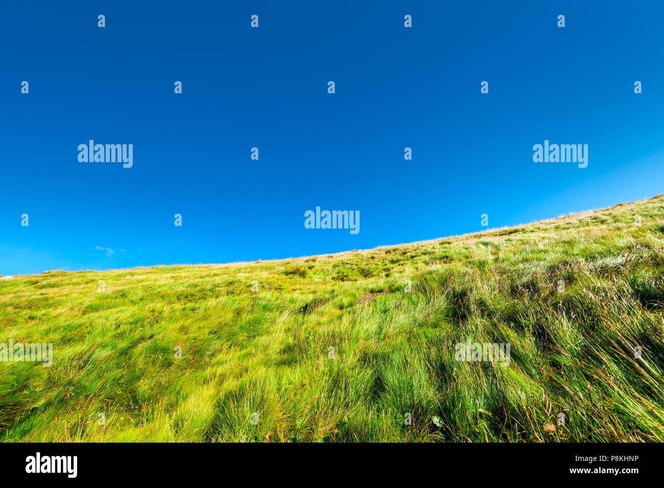 close-up of a mountainside slope covered with grass against a blue sky background - Stock Image