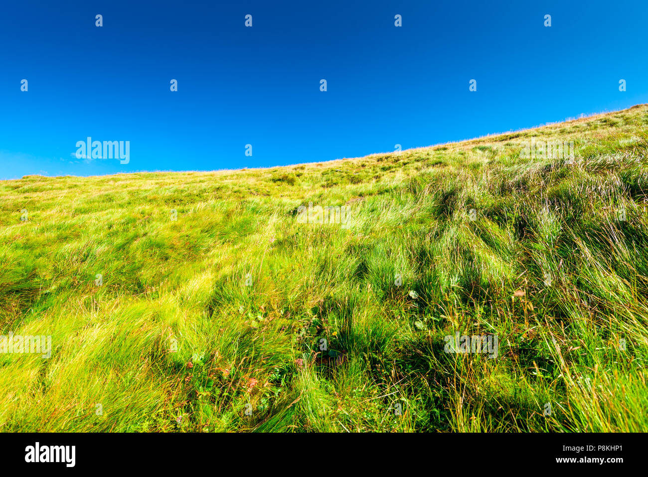 green slope of a mountain covered with grass against a blue sky background - Stock Image