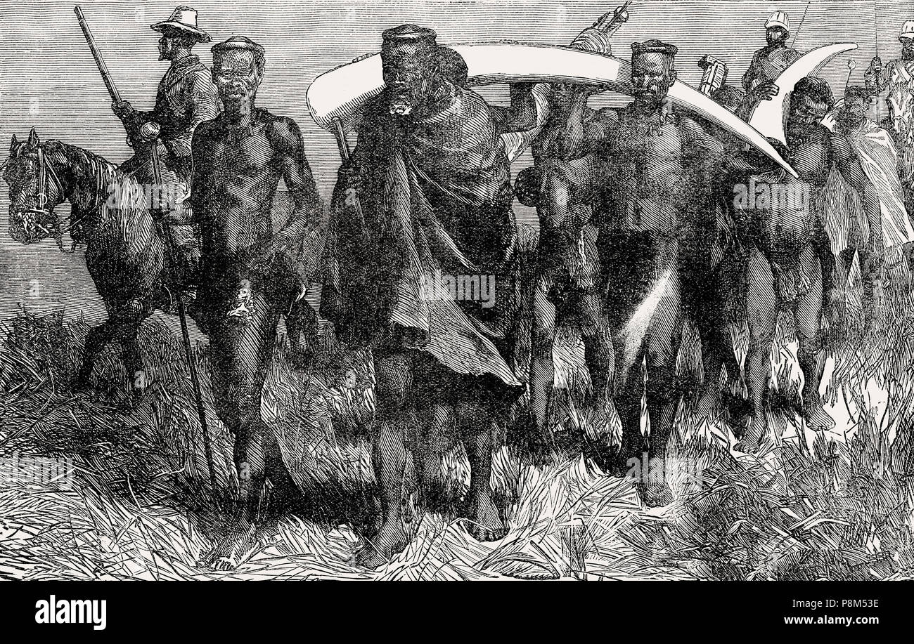 Cetshwayo kaMpande,  king  of the Zulu Kingdom bringing ivory as reparation, From British Battles on Land and Sea, by James Grant - Stock Image