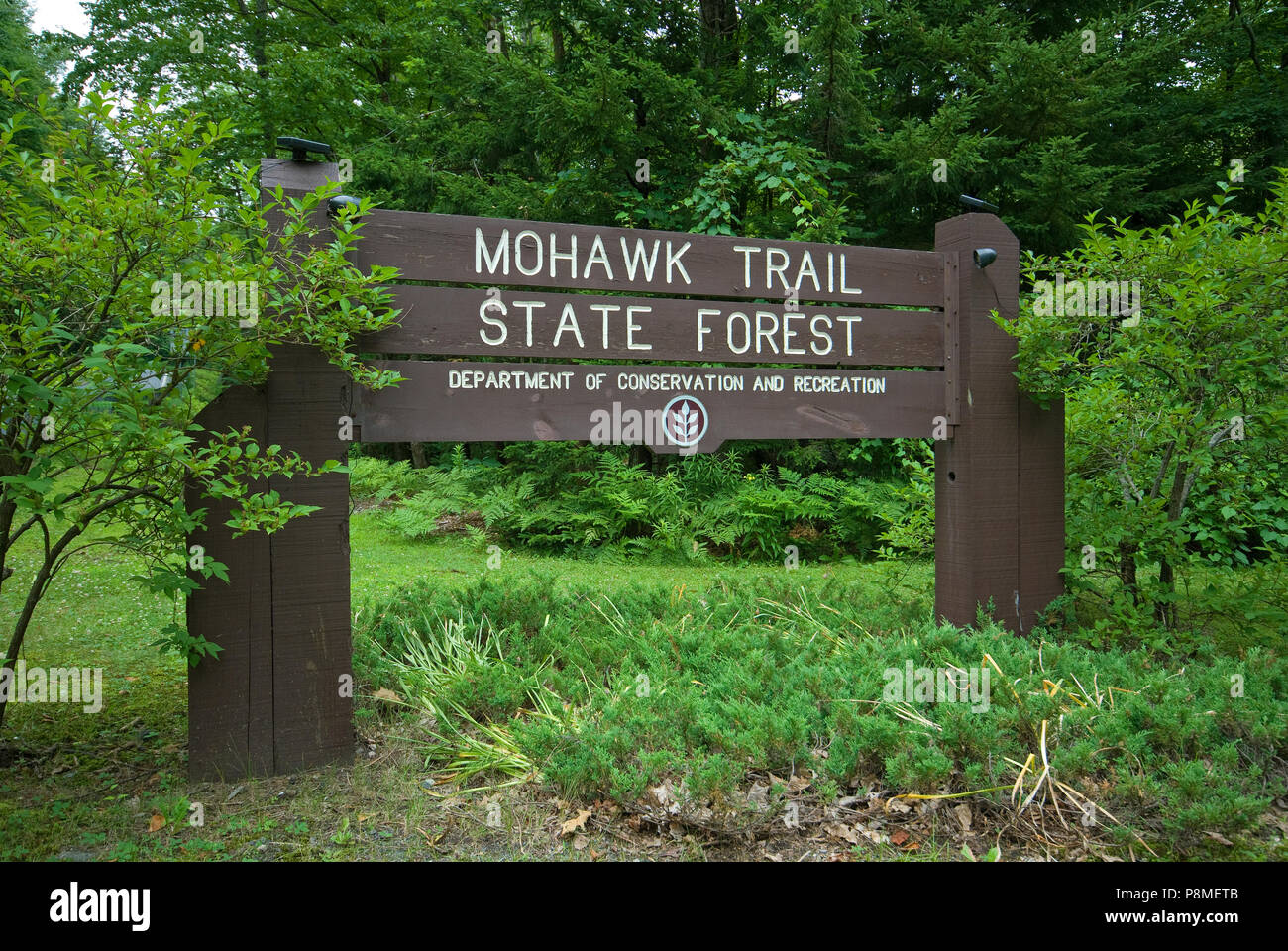 Wilderness Trail Sign Forest High Resolution Stock Photography and ...