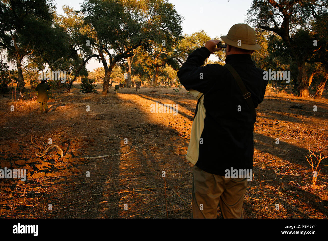 Park Ranger and Tourists on Walking Safari. Mana Pools National Park. Zimbabwe - Stock Image