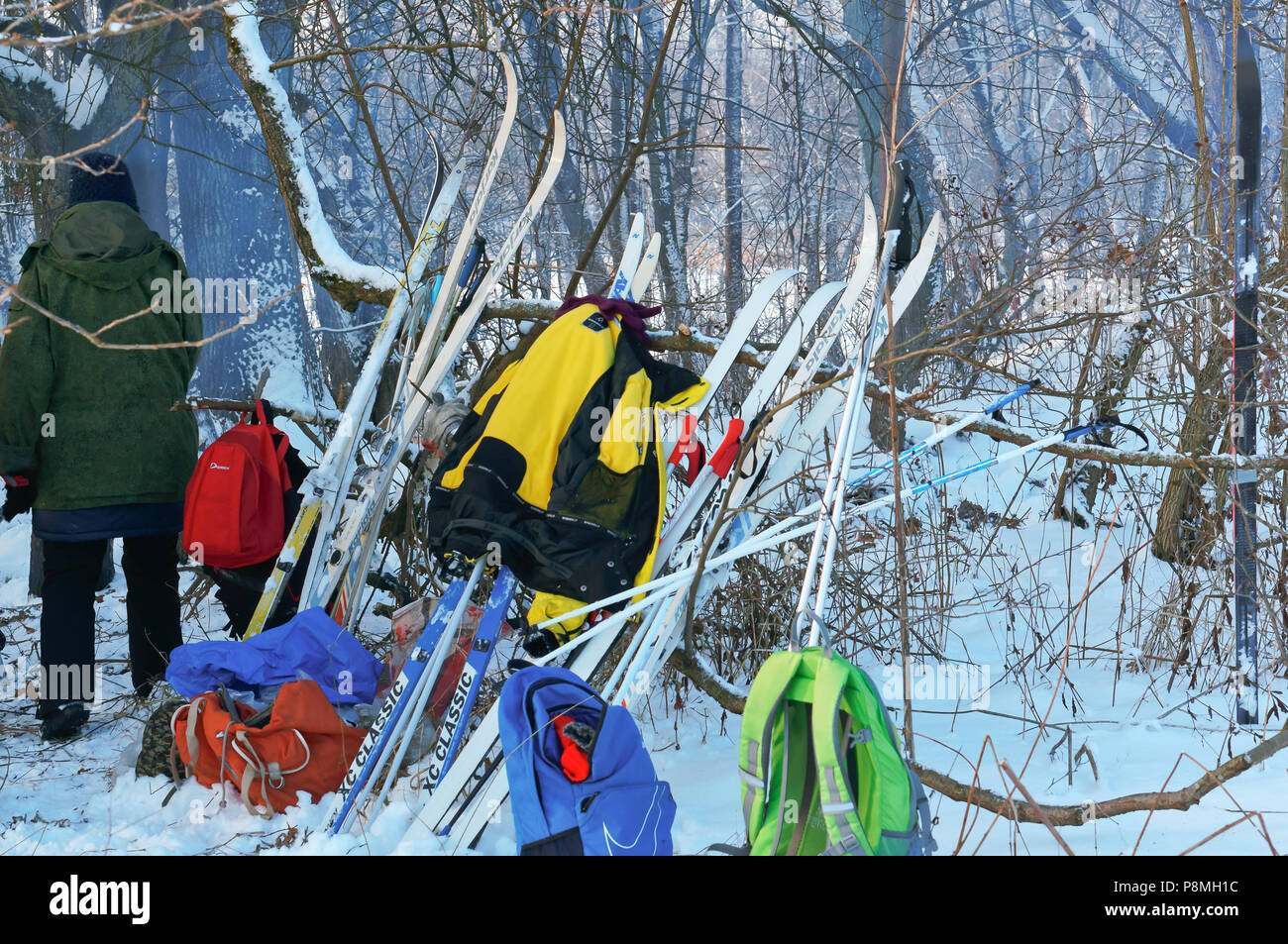 skiers resting in the forest, the ski has been standing near the tree, January 21, 2018, Kaliningrad, Russia - Stock Image