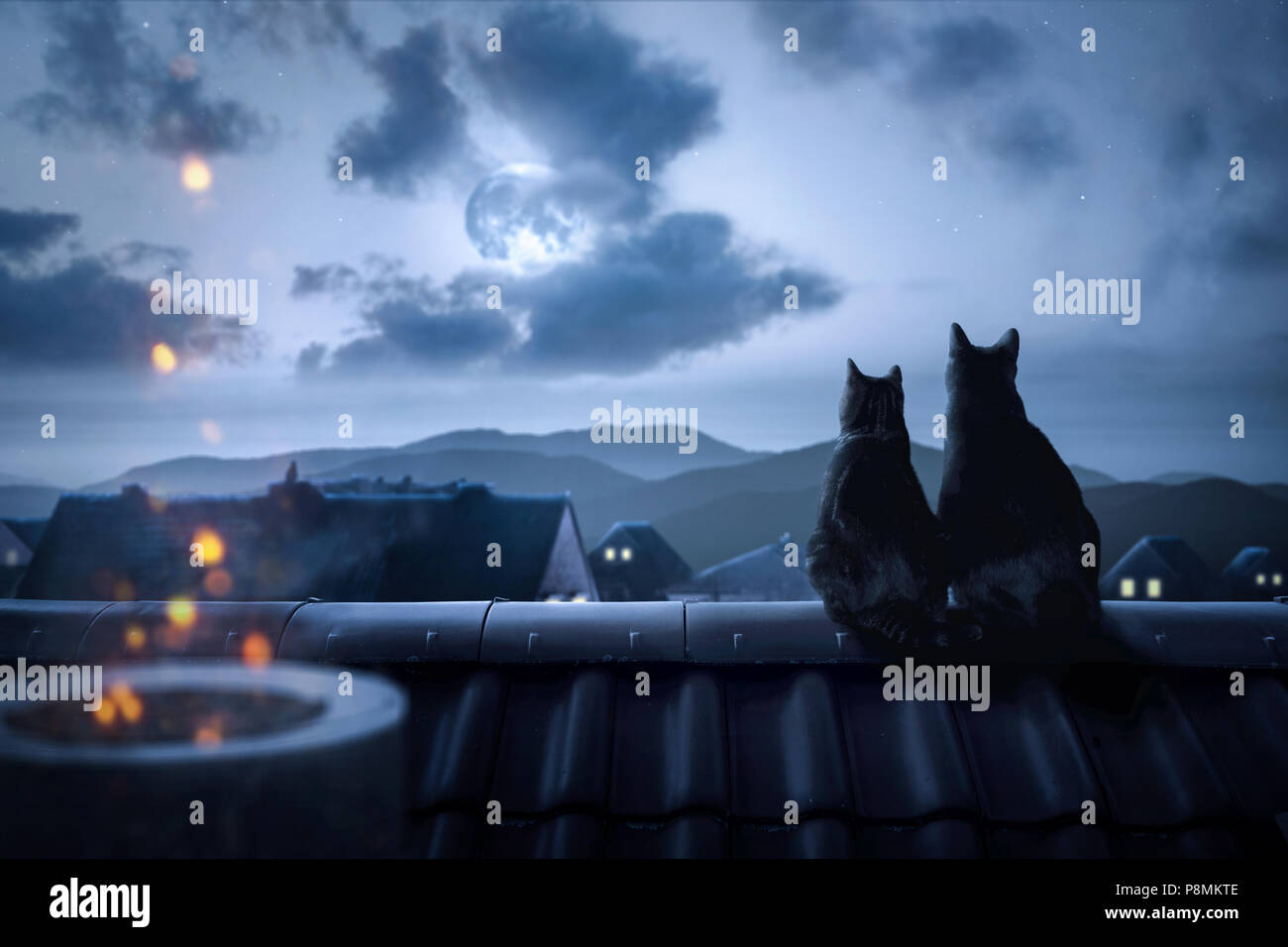 Cats on a rooftop watching the full moon - Stock Image